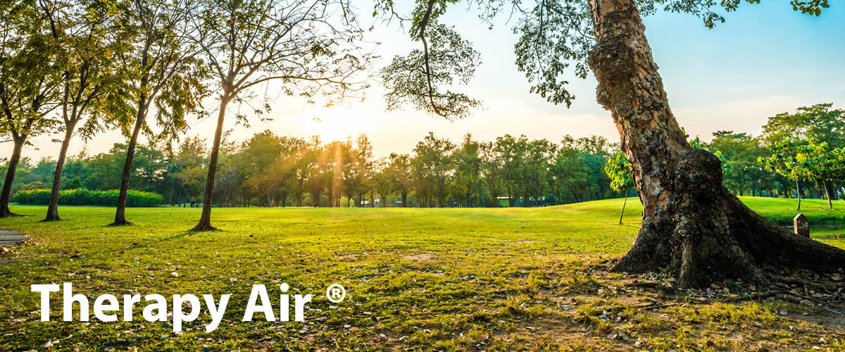 Luchtvervuiling - luchtreiniger Airtherapy
